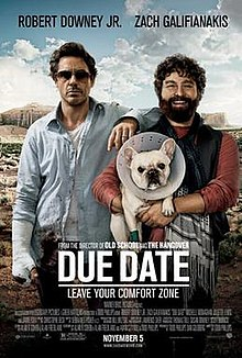 A man in a ragged blue shirt with his wrist in a cast, and his arm on the shoulder of a smiling bearded man holding a bulldog that is wearing a protective cone around its neck.the Grand Canyon is in the background.