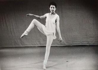 Jan Van Dyke - Image: Jan Van Dyke