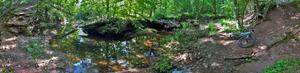 Rutgers Ecological Preserve - Image: RUEP Buel Brook Panorama