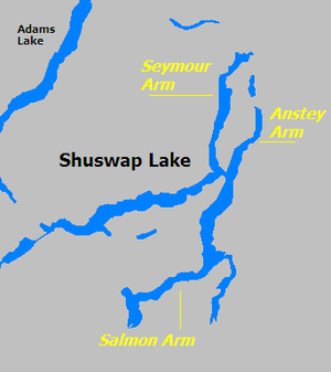 Arm (geography) - Shuswap Lake in British Columbia with its three arms