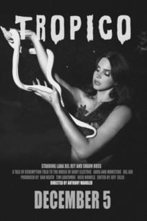 2013 film by Anthony Mandler
