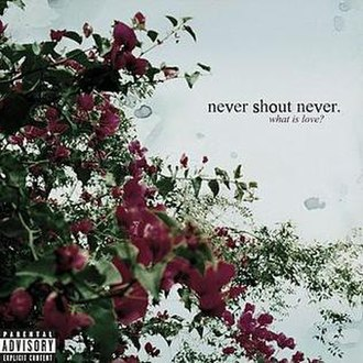 What Is Love? (Never Shout Never album) - Image: Whatislovensn