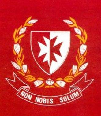 1 Medical Battalion Group - Image: 1 Medical Battalion Group Colours