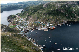McCallum, Newfoundland and Labrador - Image: Mccallum bird eye view