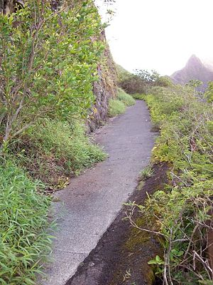 Nuʻuanu Pali - Decaying remains of the Old Pali Road.