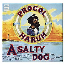 salty dog meaning