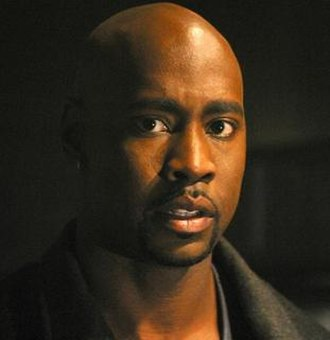Robin Wood (Buffy the Vampire Slayer) - D. B. Woodside as Robin Wood.