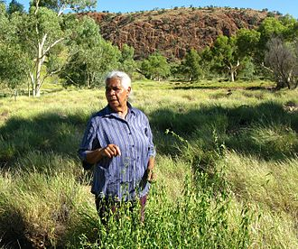 Veronica Perrule Dobson - Veronica Dobson at Anthwerrke (Emily Gap) east of Alice Springs with remnant Angelthe (Bush pear, Cynanchum floribundum) plant