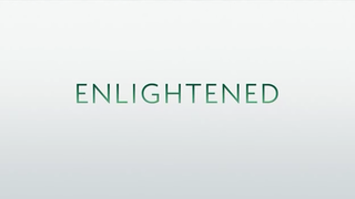 <i>Enlightened</i> (TV series) American comedy-drama television series