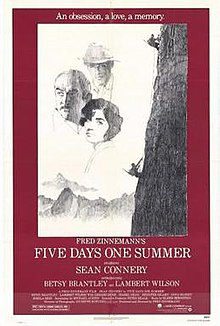 Five Days One Summer FilmPoster.jpeg