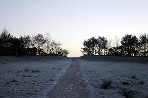 Birchwood - Pestfurlong Hill – Part of the parkland near Gorse Covert, Warrington, England (2005)