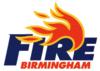 1991 Birmingham Fire season