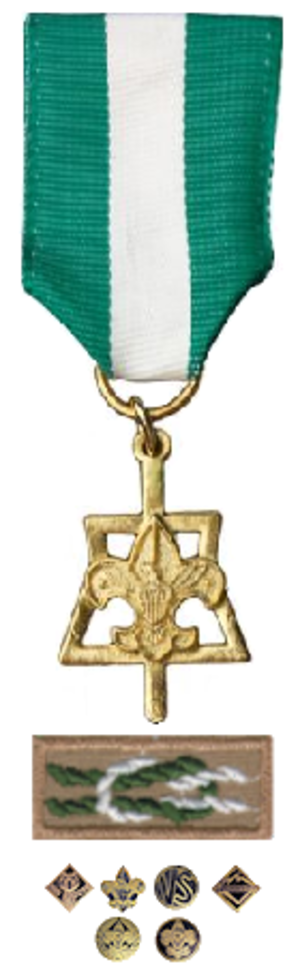 Scouter's Key Award - Medal, knot and program devices