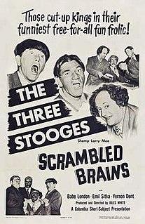 <i>Scrambled Brains</i> 1951 film by Jules White