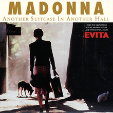 Another Suitcase in Another Hall Madonna.png