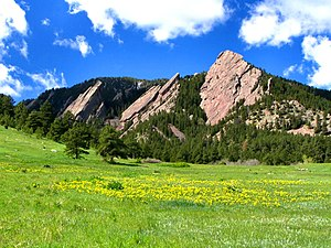 Flatirons with Spring flowers