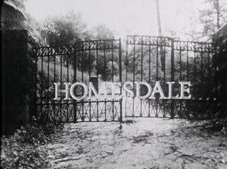 <i>Homesdale</i> 1971 Australian film