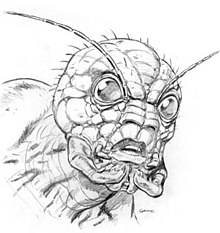 Beltvolksw02 likewise Suspensn besides Beetle Bits in addition The Lion King Coloring Pages further Ankh. on beetle