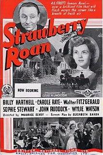 <i>Strawberry Roan</i> (1945 film)