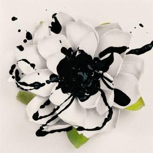 White Lotus (album) - Image: White Lotus (ESTK album)