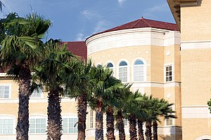 Texas A&M University–Kingsville - Row of Palm trees leading to the Javelina Engineering Complex