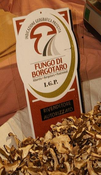 Borgo Val di Taro - Logo of the Fungo di Borgotaro