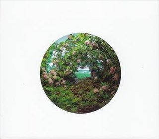 <i>In Lambeth</i> (album) 2013 studio album by John Zorn / Gnostic Trio