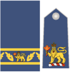 RCAF Insignias - Governor General of Canada.png