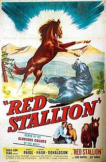 <i>The Red Stallion</i> 1947 film by Lesley Selander