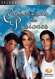 <i>Cañaveral de Pasiones</i>