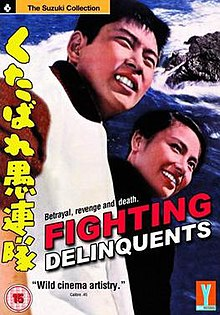 Fighting Delinquents DVD.jpg