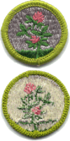 Forage Crops merit badge, type G.png