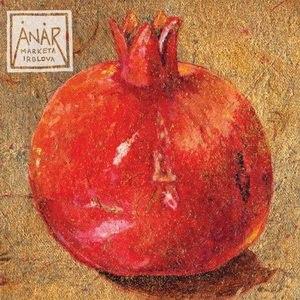 Anar (album) - Image: Markéta Irglová Anar cover