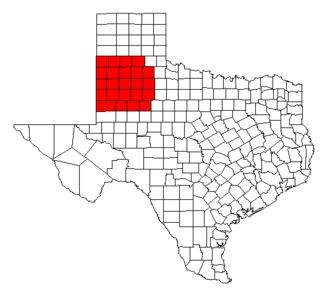 South Plains - Image: Texas south plains counties