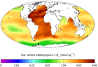 "Sea surface ""present day"" (1990s) anthropogenic CO2"