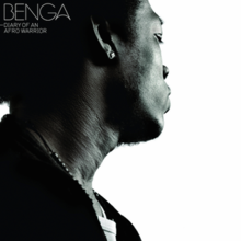 Benga - Diary of an Afro Warrior cover.PNG