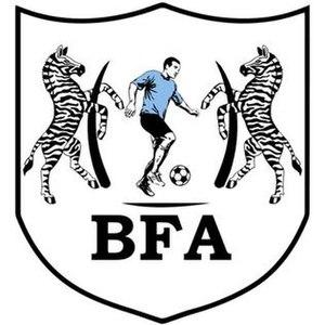 Botswana national football team - Image: Botswana Football Logo 2017