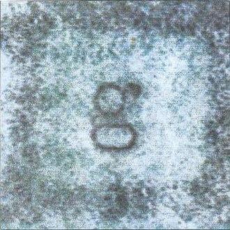 G (King Creosote album) - Image: Kingcreosote G album