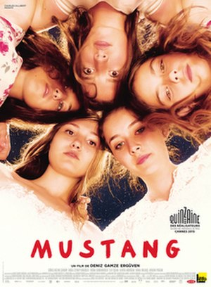 Mustang (film) - Theatrical release poster
