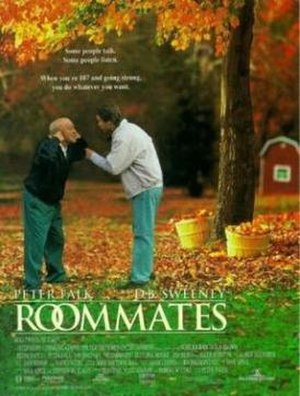 Roommates (1995 film) - Promotional poster