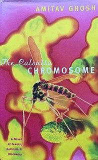 <i>The Calcutta Chromosome</i> 1995 book by Amitav Ghosh