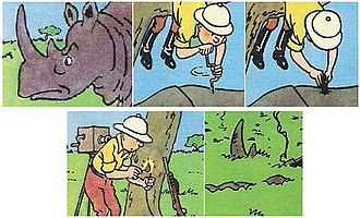 The Adventures of Tintin - Image: Tintin in the Congo Rhino