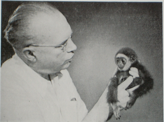 Robert van Gulik - Robert van Gulik with a baby gibbon Bubu