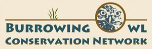 Burrowing Owl Conservation Network - Image: Burrowing Owl Conservation Network logo