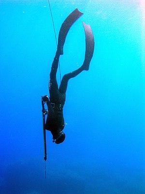 Free Dive 3