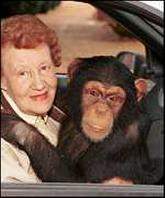 Molly Badham - Badham with Tommy the Chimp