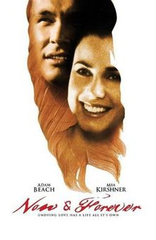 Now and Forever (2002 film).jpg