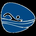 Swimming, Rio 2016 (Paralympics).png