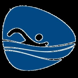 Swimming at the 2016 Summer Paralympics - Image: Swimming, Rio 2016 (Paralympics)