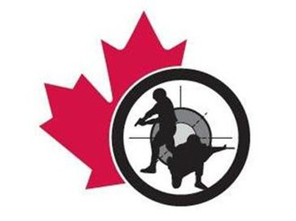 Canadian Forces Small Arms Concentration - The logo of the Canadian Armed Forces Small Arms Concentration and Canadian Army Skill-At-Arms Meeting.